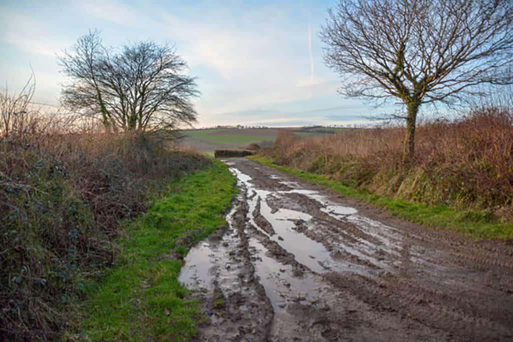 Muddy Devon