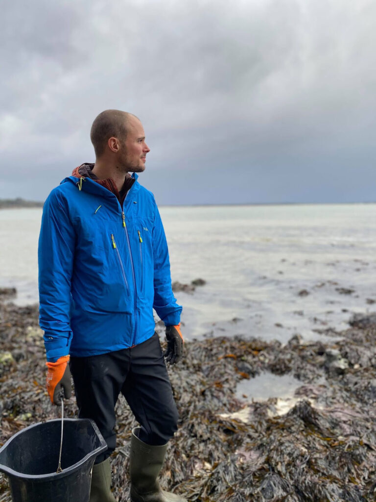 Foraging for local oysters