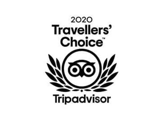 2020 Travelers choice